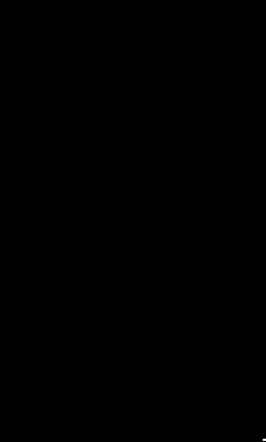 Lady Valeska Logo